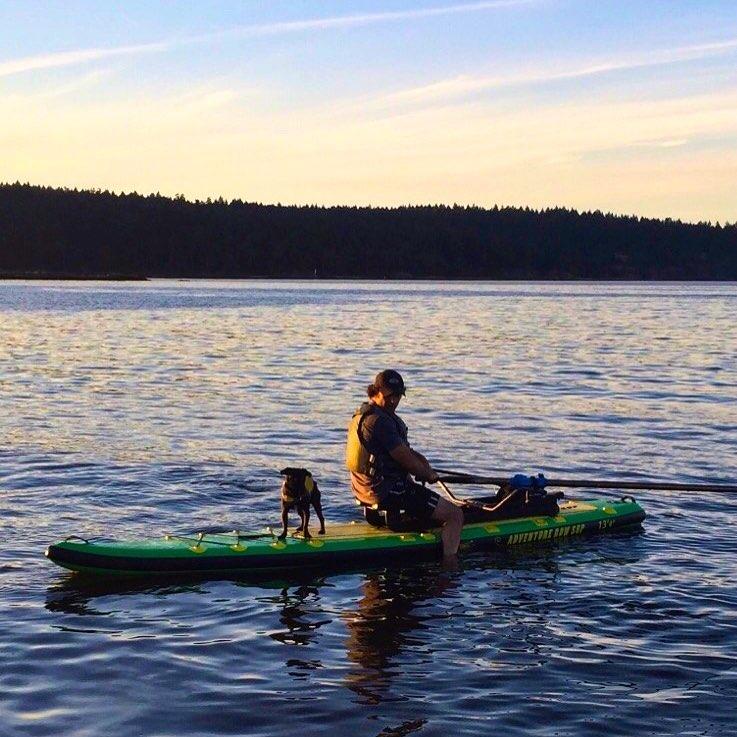 Dog-Rowing-Oar-Board-Sunsent