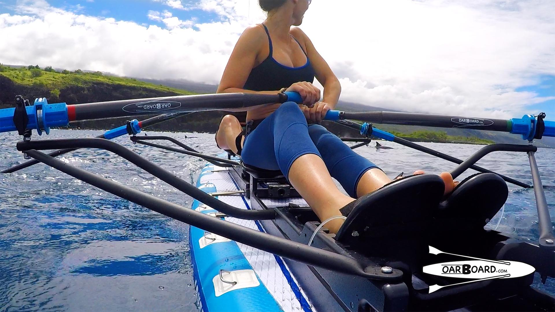 Oar-Board-Rowing-Dolphins-Hawaii-Row