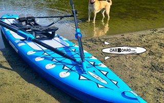 Thetis-Lake-Dog-Oar-Board-Rower