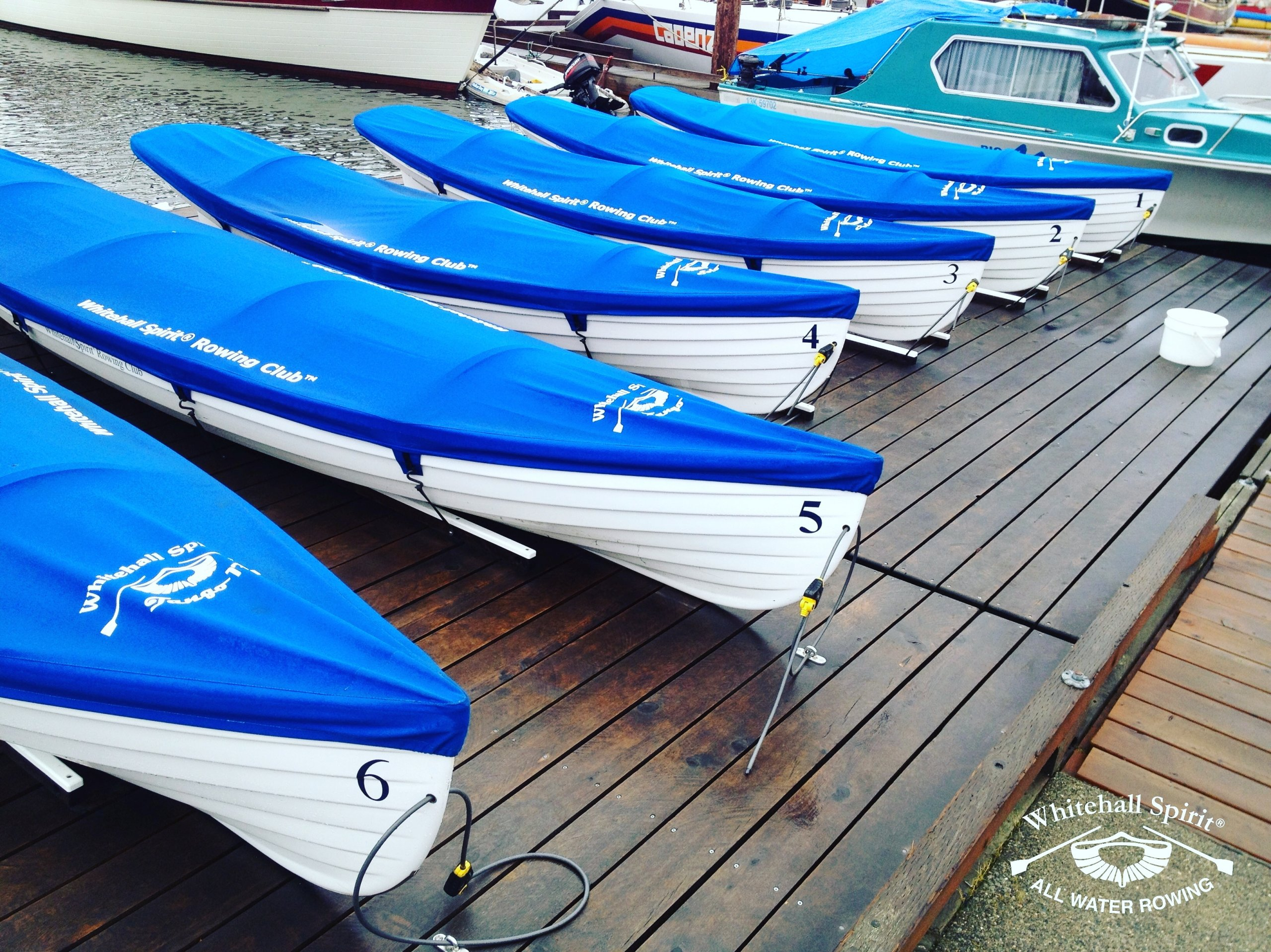 Whitehall Spirit® Rowing Club: Whitehall Rowing & Sail's 'Boat Share' Rowing Club provides 'All Water' slide seat rowing in Victoria, British Columbia, Canada.